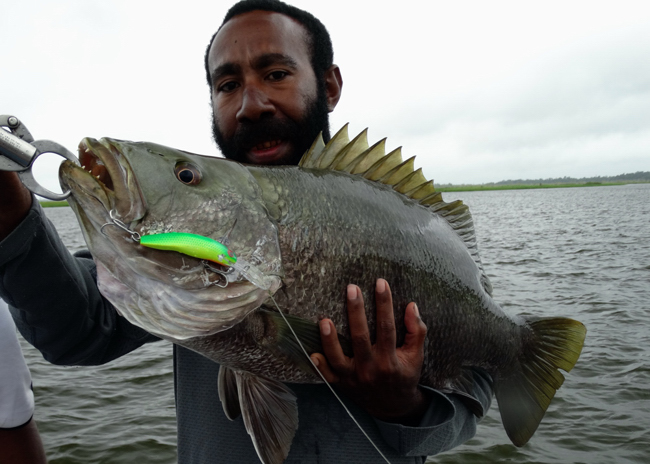 Oargee lures Tigerlures